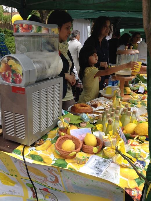 モンテロッソのレモン祭り_a0136671_1312953.jpg
