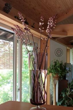 庭の花飾ろ♪_a0263675_032623.jpg