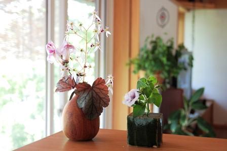 庭の花飾ろ♪_a0263675_0364425.jpg