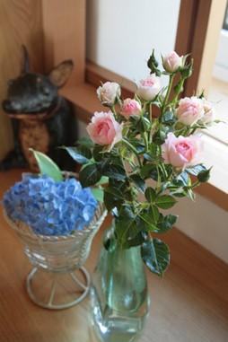 庭の花飾ろ♪_a0263675_0371189.jpg