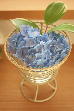 庭の花飾ろ♪_a0263675_0372111.jpg