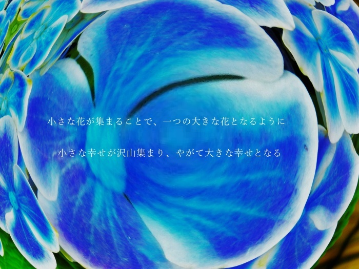 d0199578_09302513.jpg