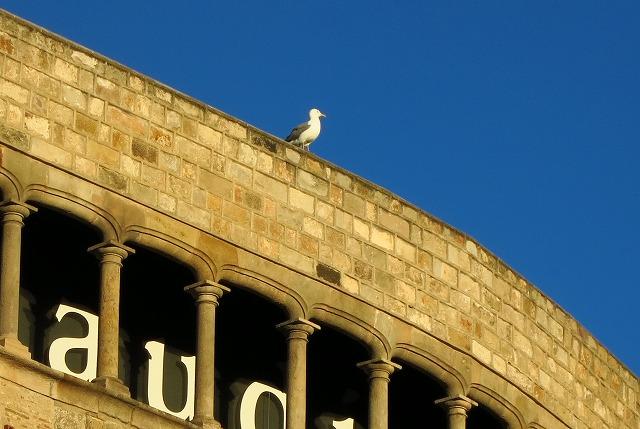 バルセロナの街編_c0239901_1851589.jpg