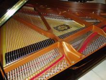 ピアノ定期調律_e0344611_22551701.jpg