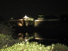 暖かな冬の夜_e0344611_23040535.jpg