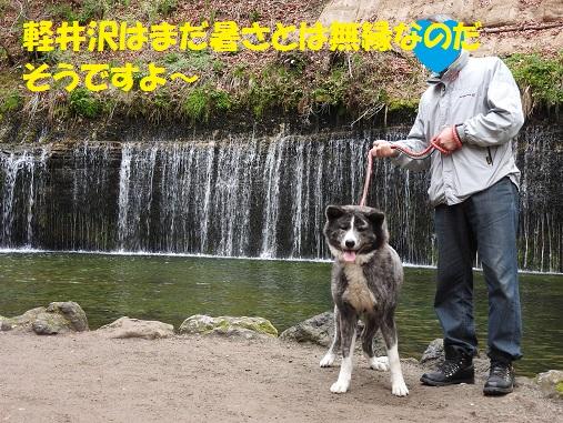 f0121712_1645363.jpg