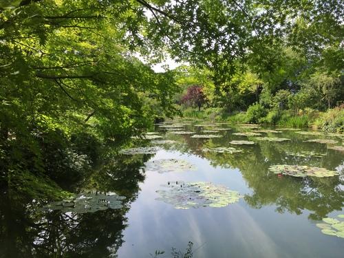 「モネの庭 マルモッタン」_e0288544_11212865.jpg
