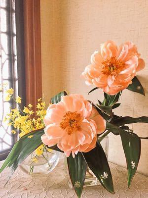 オレンジ色のシャクヤク⁉︎_e0086864_12484286.jpg