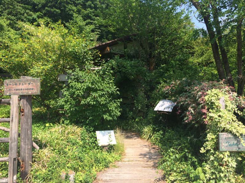ターシャ・チューダーの庭(花フェスタ記念公園)_e0233674_1724066.jpg