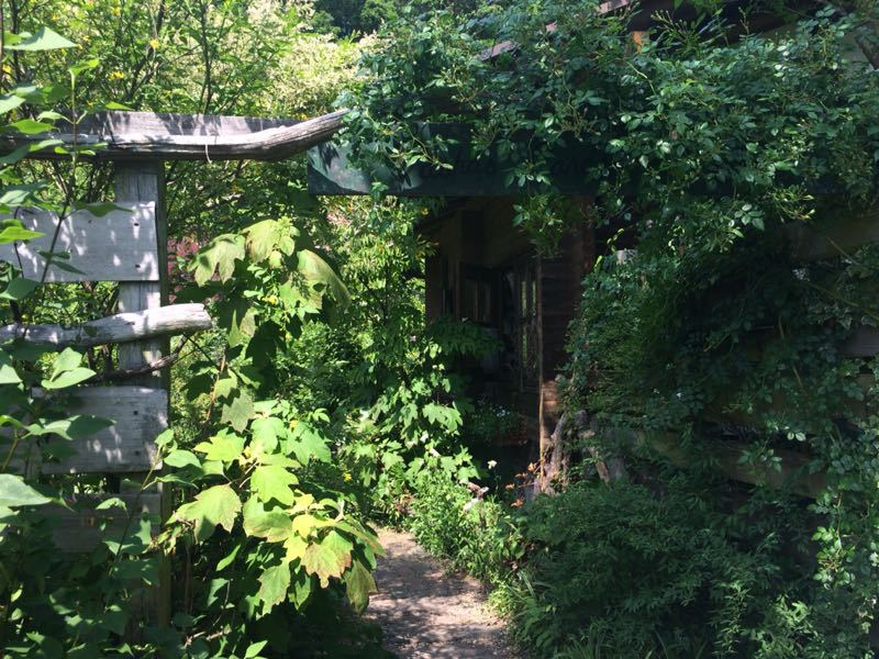 ターシャ・チューダーの庭(花フェスタ記念公園)_e0233674_1724181.jpg