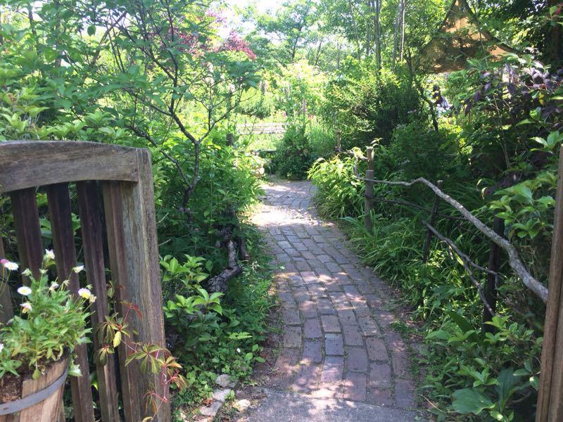 ターシャ・チューダーの庭(花フェスタ記念公園)_e0233674_1724395.jpg