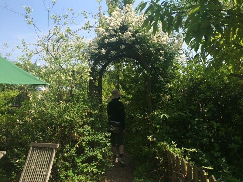ターシャ・チューダーの庭(花フェスタ記念公園)_e0233674_1725396.jpg
