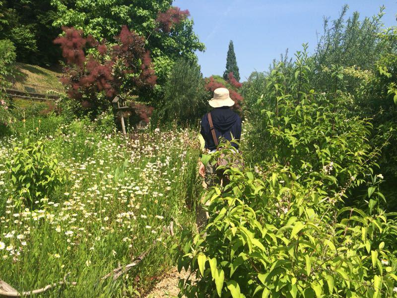 ターシャ・チューダーの庭(花フェスタ記念公園)_e0233674_1725441.jpg