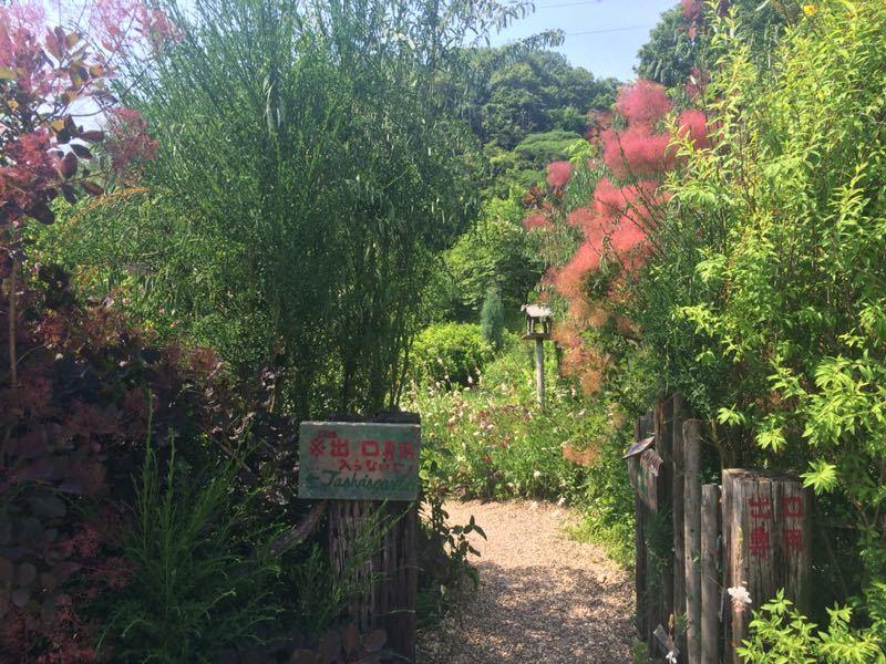 ターシャ・チューダーの庭(花フェスタ記念公園)_e0233674_1725620.jpg