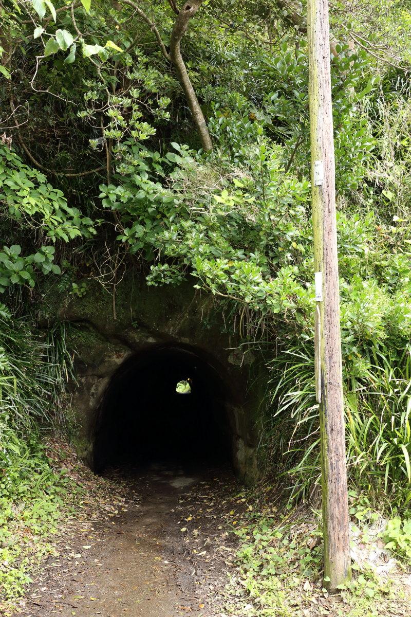 鵜原  天下一手掘り隧道_b0061717_6334036.jpg