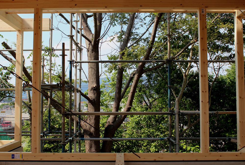 木フレームに切り取られた風景_d0082238_2232258.jpg