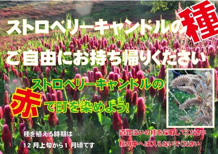 b0214652_19065061.jpg