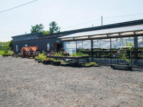 「大森カントリーガーデン」へ・・宿根草の苗を買いに行きました!_f0276498_00060921.jpg
