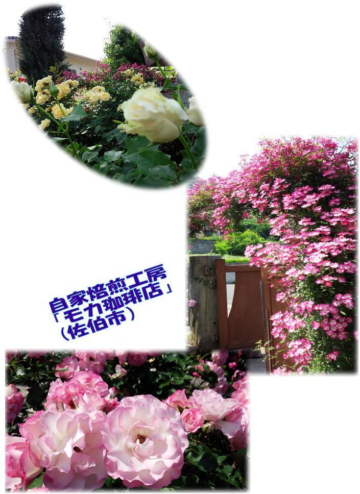 第27回全国ろうあ高齢者大会in北海道_d0070316_17541313.jpg