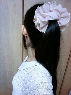 薄桃色のアルバム_f0070628_032318.jpg