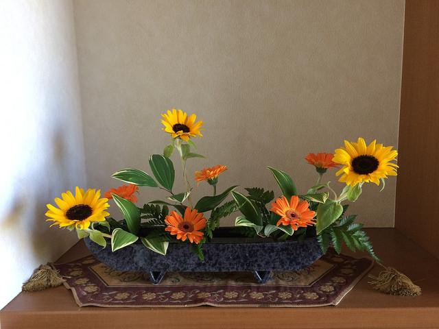 5/26のお花:ひまわりとガーベラ_b0042538_19583765.jpg