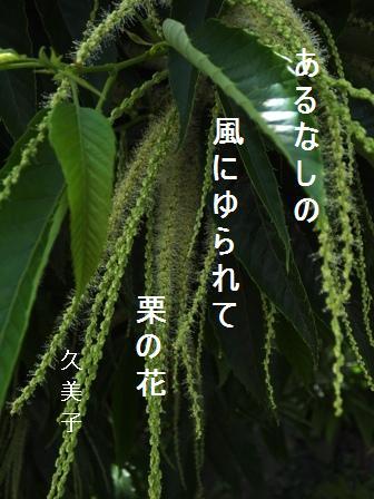 栗の花_e0003966_2015152.jpg
