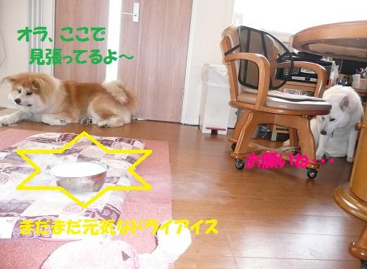 f0121712_15412933.jpg