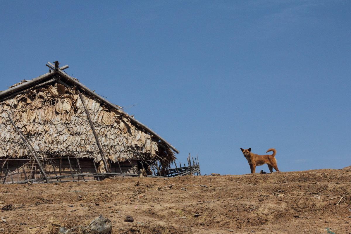 ルアンナムター  ラフ族の村に辿り着く_b0061717_128965.jpg