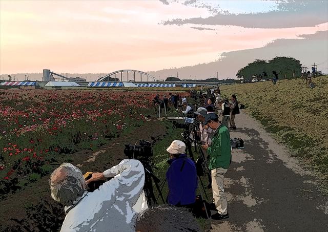 小貝川ふれあい公園 4_f0018464_559121.jpg