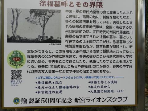 坐骨神経痛 闘病体験記一年経過報告_e0024094_1461718.jpg