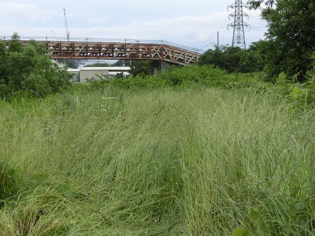 暑さに負けず! 本年度最初の滝川の草刈り清掃_f0141310_729279.jpg