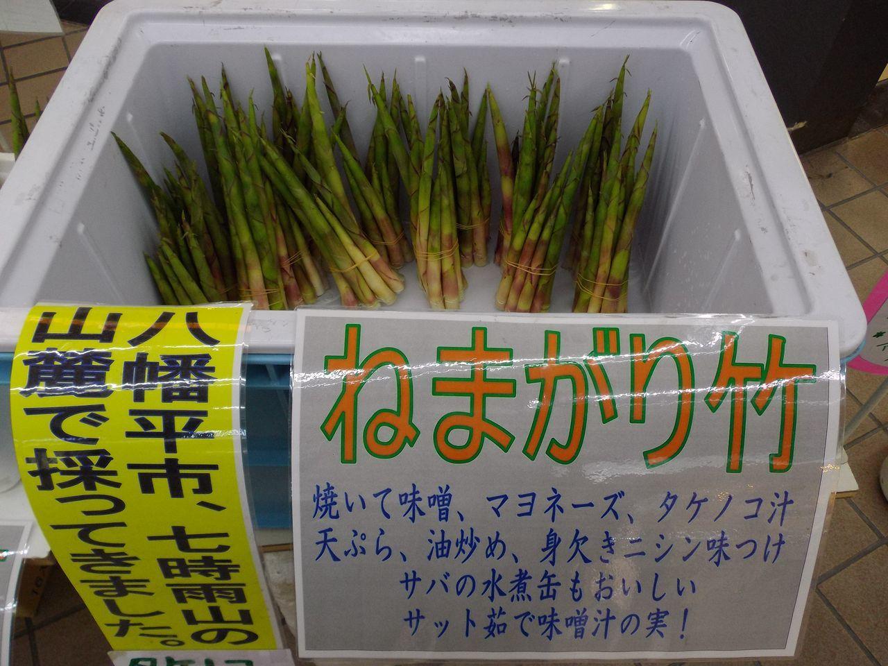 札幌へ_c0025115_21550256.jpg
