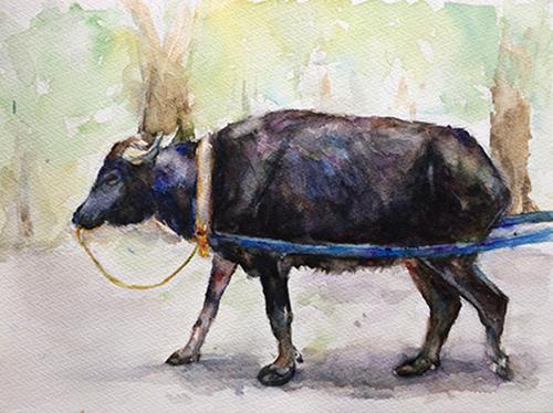 水牛を描いてみました♪_b0105719_0232869.jpg