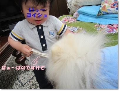 b0167519_2217921.jpg