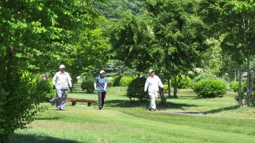 第8回岩泉町長杯パークゴルフ選手権大会1_b0219993_1739155.jpg