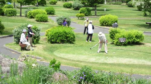 第8回岩泉町長杯パークゴルフ選手権大会1_b0219993_17392272.jpg
