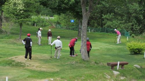 第8回岩泉町長杯パークゴルフ選手権大会1_b0219993_17394114.jpg