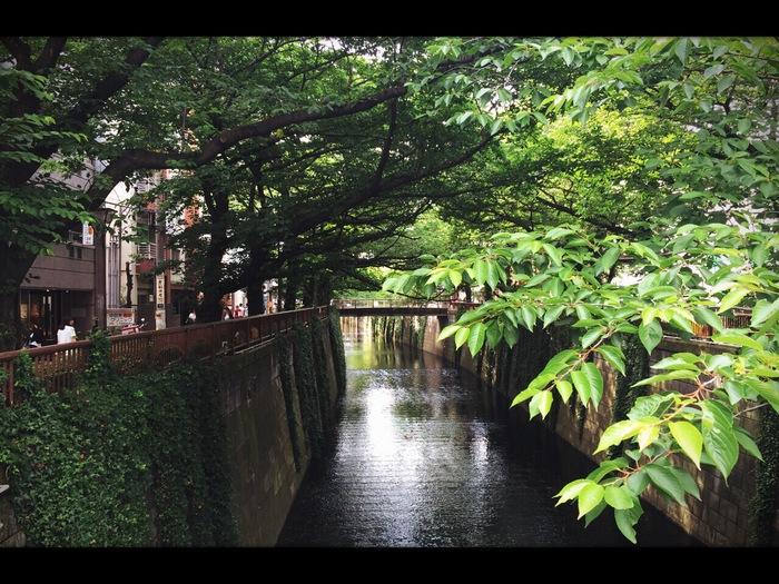 kiseki 7th への道!!_f0137346_12105689.jpg
