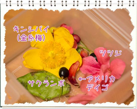 b0224269_23592011.jpg