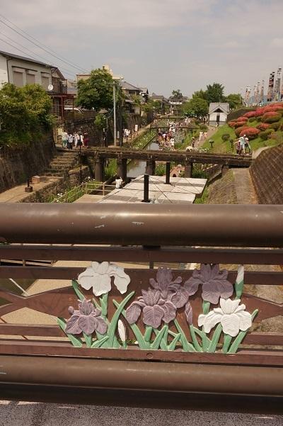 高瀬裏川花しょうぶ_b0228113_17485172.jpg