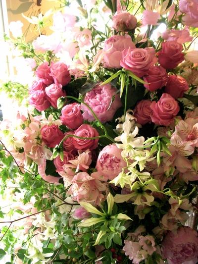 Graduation flowers。。。_a0229658_8452133.jpg