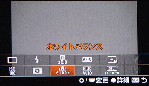 b0171364_1334585.jpg