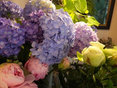 オークリーフ(水色の紫陽花)_f0049672_1727552.jpg