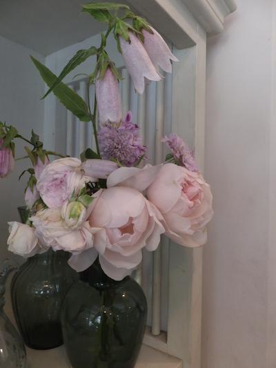 オークリーフ(水色の紫陽花)_f0049672_1734127.jpg
