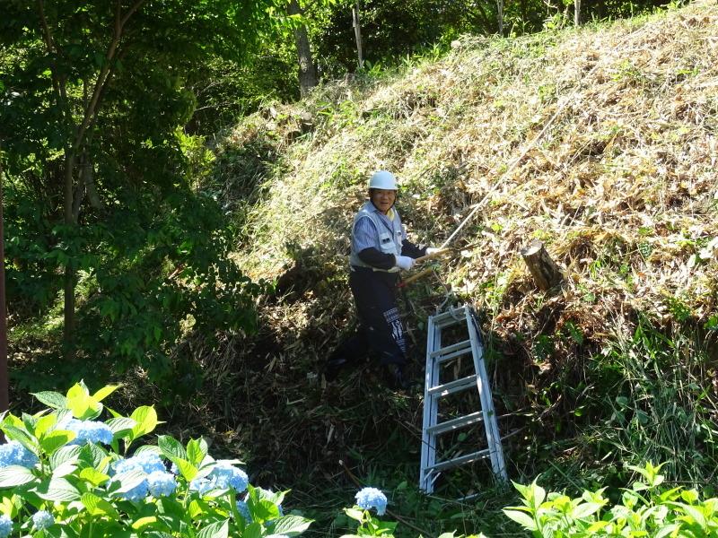 崖っぷちの草刈り継続 in うみべの森_c0108460_17432294.jpg