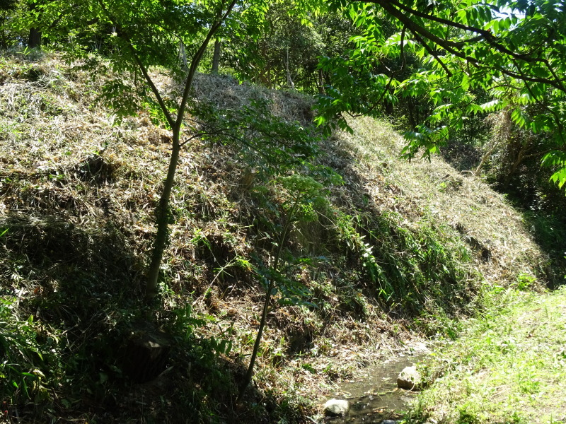 崖っぷちの草刈り継続 in うみべの森_c0108460_17530114.jpg