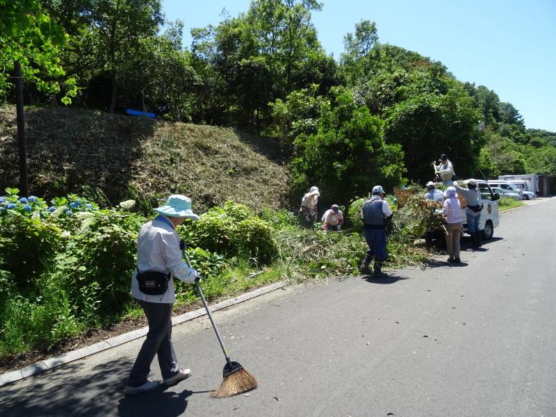 崖っぷちの草刈り継続 in うみべの森_c0108460_17530352.jpg