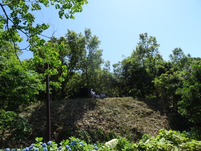崖っぷちの草刈り継続 in うみべの森_c0108460_17530677.jpg