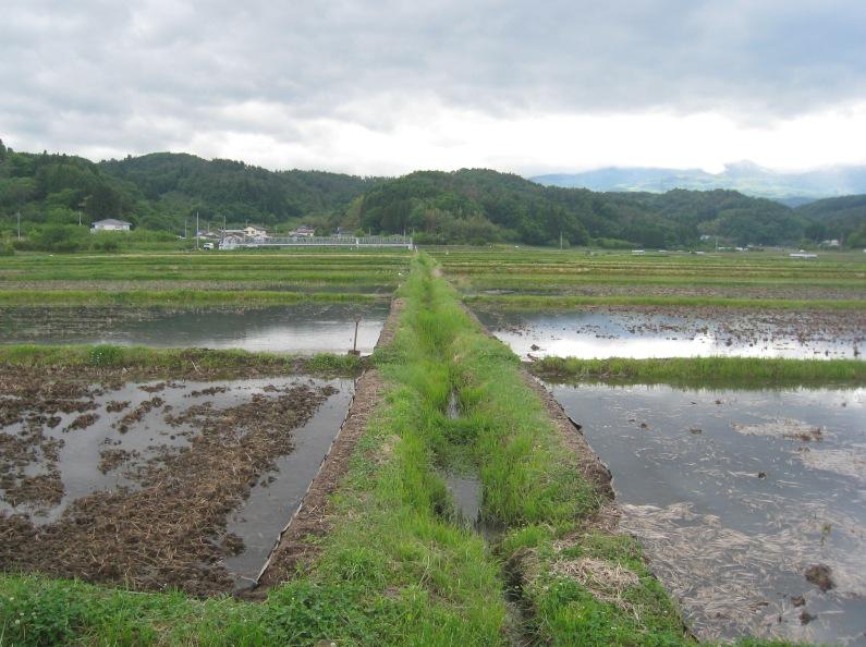 山田村の散策:小田村とのかかわり②_a0087378_15121639.jpg