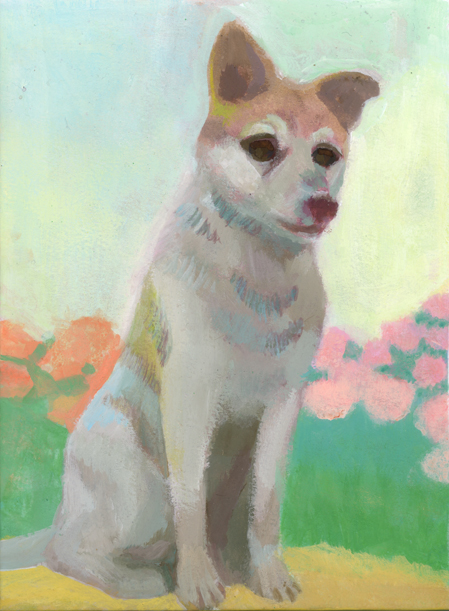 幸四郎と言う名前の犬がいた_b0194880_384346.jpg
